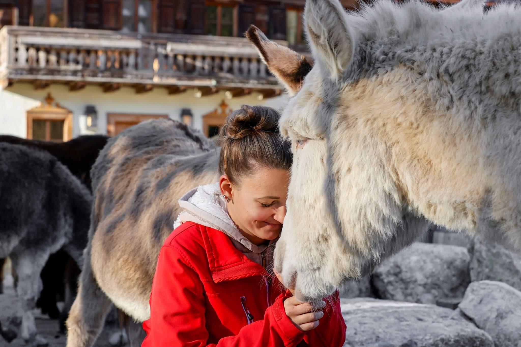 Mitarbeiterin mit Esel