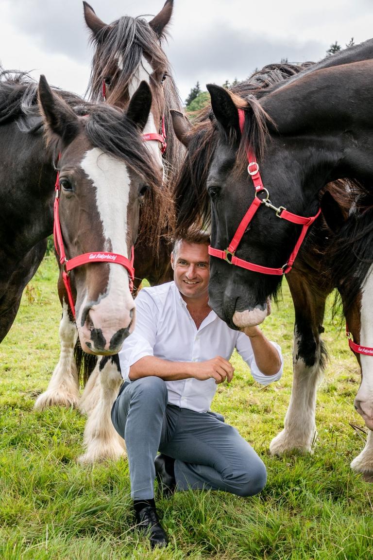 Dieter Ehrengrüber fühlt sich inmitten der riesigen Shire Horses pudelwohl