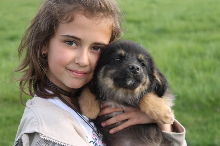 Ein geretteter Welpe in Rumänien
