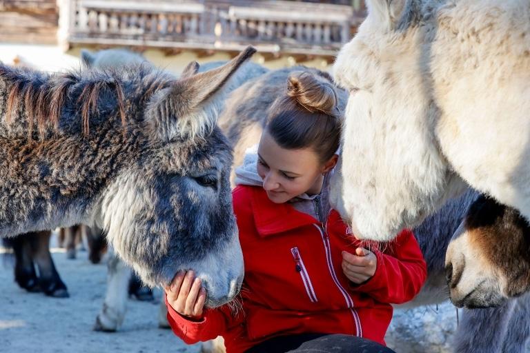 Tierpflegerin Sabine mit Eseln