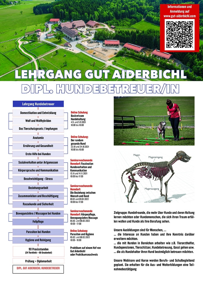 Lehrplan Hundebetreuer 768