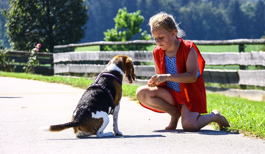 Kind und Hund auf Gut Aiderbichl Henndorf