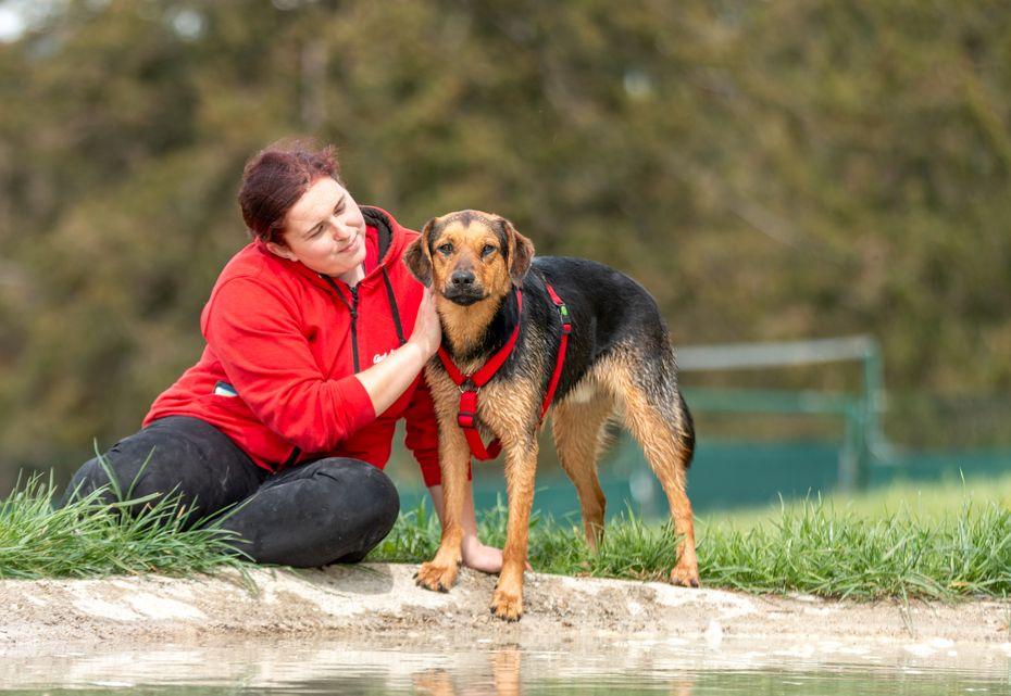 Tierfpflegerin Stephi mit Hund Vadu
