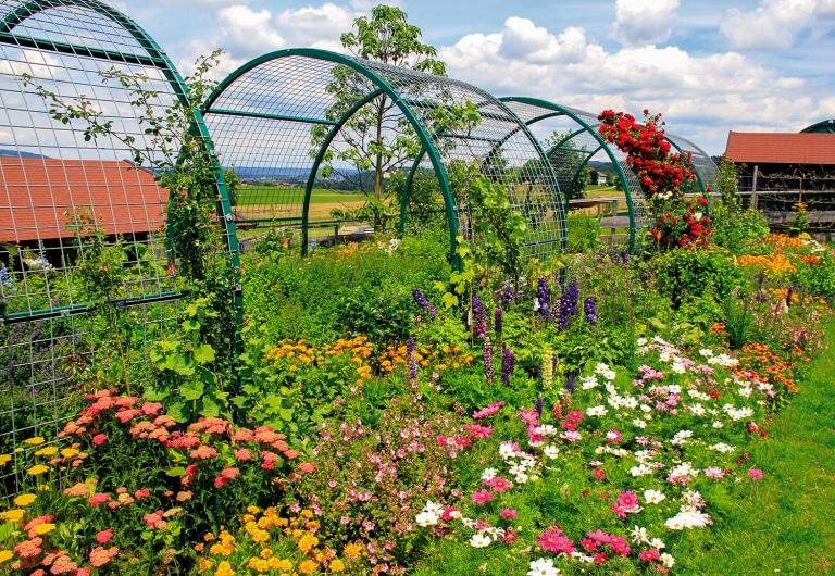 Auf Gut Aiderbichl Henndorf haben wir einen bunten Insektengarten für Bienen