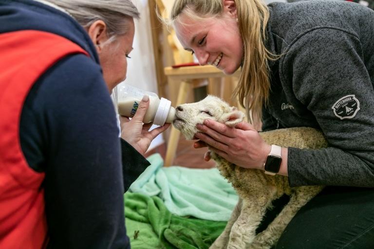 Unsere Tierpflegerinnen waren sehr froh als Lia endlich getrunken hat