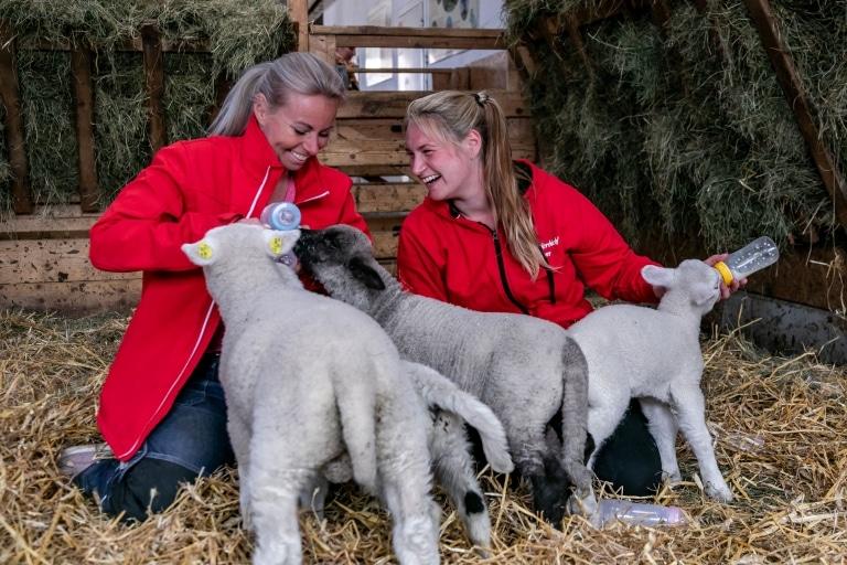 Eva Zach und Michaela Altendorfer mit der Schaf-Gang