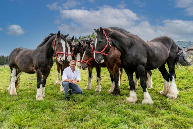 Dieter Ehrengruber gemeinsam mit den Shire Horses